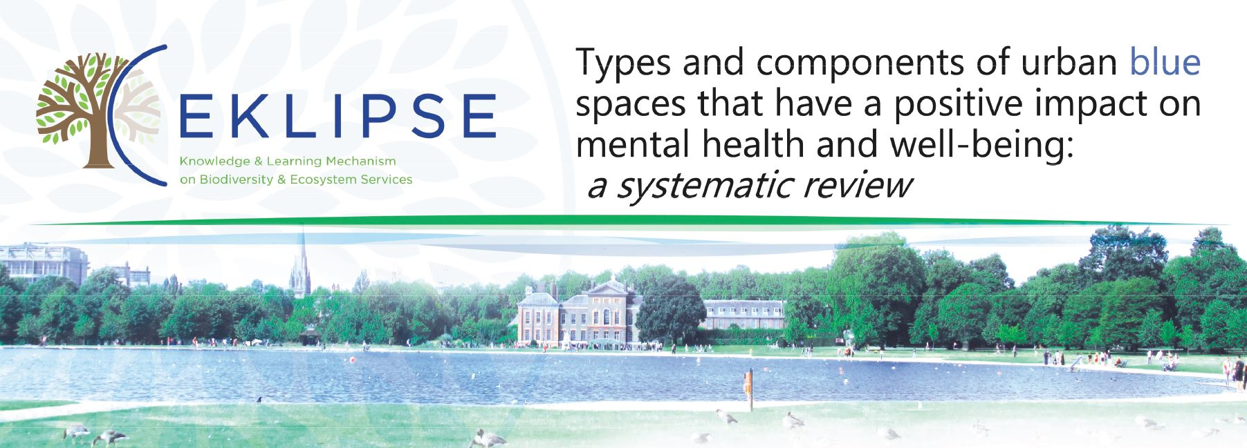 Blue space and mental health report out for review!